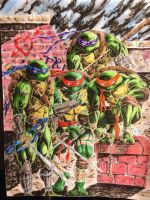 Turtle Team by coyote117