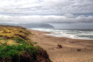 Point Reyes Headland from the Beach by PaulWeber
