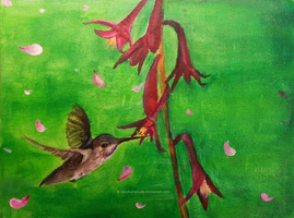 The Humming Bird by BlissfulMelody