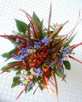 Christmas Flowers II by Alcyone07