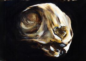 Cat Skull 02 by JenTheThirdGal
