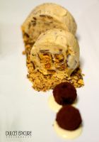 Chocolate and Honeycomb Icecream by DulcetEpicure