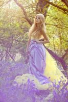 spring14 by sarahlouisejohnson