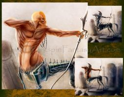 Centaur Muscle Anatomy Study + Video Tutorial Link by Yarkspiri