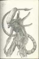 Alien sketch by allaboutnothing