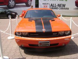 2009 Dodge Challenger - Front by LittleBigDave
