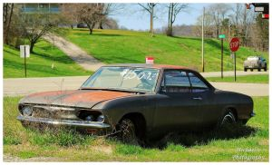 A Chevy Corvair In The Weeds! by TheMan268