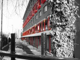 Selective color experiment 2 by Nine80