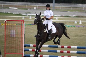STOCK Showjumping 443 by aussiegal7