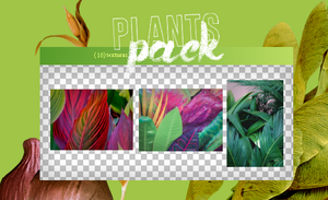 PLANTS PACK by WingsToButterfly