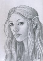 Elven Character by cthullhu