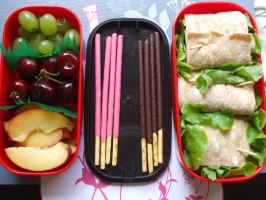 Bento 18 last of 2007 by TheGreyPhoenix
