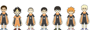 haikyuu!! pixels - karasuno by carefreeaction