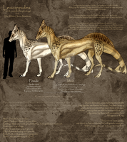 Leucippides -- Ref by ObloquyCondemed