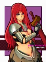 Fairy Tail-Erza by maorenc