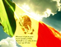 Viva Mexico by jaguar404