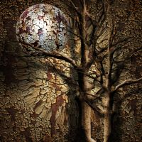 In the rusted wood  by hallbe