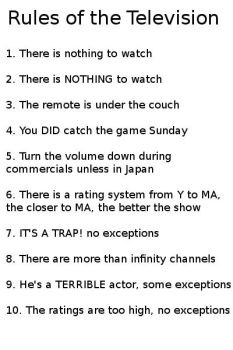 Rules of the Television by Pizzaface4372