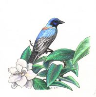 Gardenias and Blue Birds by Luthrai