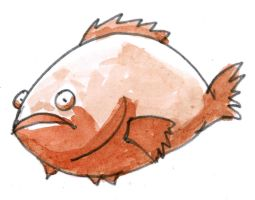 Red Grouper by parka