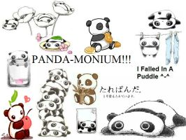 PANDA-MONIUM by GreenDayGirl18