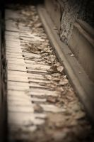 The Piano Tree 4 by SessaT