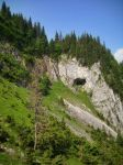 A cave of bear by ad-dushk-ad