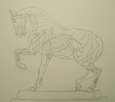 Horse Sculpture Line Drawing by BAC-of-all-trades