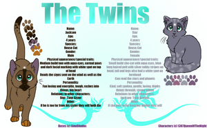 The Twins -Contest Entry- by 1307QueenOfTheNight