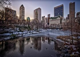 Central Park Pond by Tomoji-ized