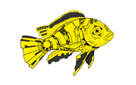 mechanical fish by Jags4