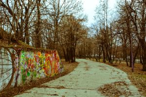 Lonely path by aNaty