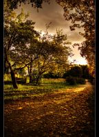 Golden autumn by Patual