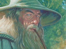 Gandalf3 by ssava
