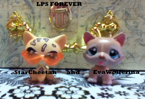 Me and StarCheetah as LPS by EvaWolferina