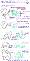 Lion - research and practice sheet by Minks-Art