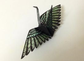 papercutting:wing by tuitati