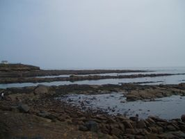 Tynemouth Cullercoats by lauren-s