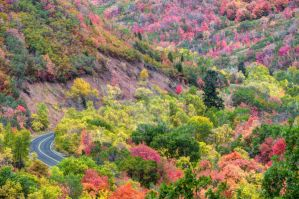 Fall Sunday Drive through East Canyon - Utah by gwhitton