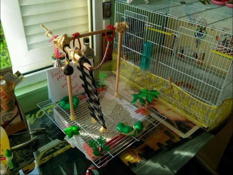 Handmade playground for parrots 3 by MissVeronici