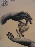 Hands by Pate88
