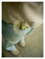 Pocket full of sunshine. by Littography