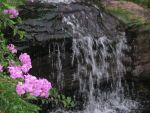 Flower Waterfall by m1nuTe0fDeCaY