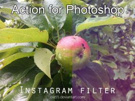 Instagram Photoshop Action 1 by Ola55