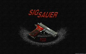 Sig Sauer P229 Elite - wide by thypentacle
