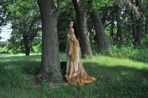 Gold Dress 045 by elusiveelegance