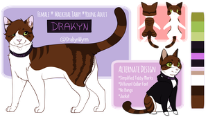 Drakyn Ref Sheet by DrakynWyrm