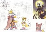 Sonic Boom : The Ancients/Ancestors Theory part 3 by Auroblaze