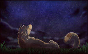 Star Gazer by Aki-the-wolf