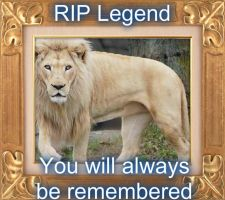 RIP Legend by Talon334